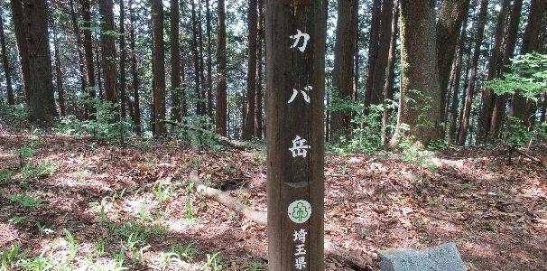 カバ岳~丸山 (トレーニング山行)
