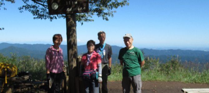 個人山行 北東尾根から棒ノ折山(969m)